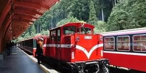 坐小火车,逛阿里山