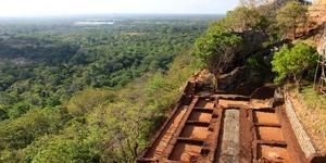 斯里兰卡狮子岩: 一个国王和500个王妃的空中宫殿